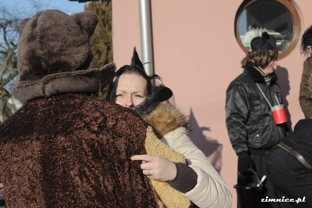 Przeglądasz galerie Wodzenie niedźwiedzia w Zimnicach Wielkich 28.01.2017
